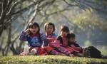 Ngày Tết của đồng bào dân tộc Hmong ở Mộc Châu