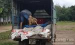 Chặn đứng hàng trăm kg gà chết trên đường đi tiêu thụ