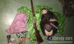 Tịch thu Voọc chà vá chân nâu, súng trong Vườn Quốc gia Bạch Mã