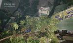 TP.HCM: Nhà tốc mái, cây ngã la liệt trước bão số 14
