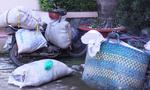 Chở nửa tấn thịt heo thối rữa từ Đồng Nai về TP.HCM làm tóp mỡ