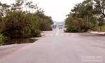 Làng đại học ngổn ngang cột điện, cây xanh gãy đổ sau mưa lớn