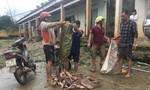 Cơ sở nuôi cá tầm bị nước lũ cuốn trôi, thiệt hại 5 tỷ đồng