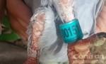 Một người dân bắt được chim Bồ Câu đeo vòng nhựa đính số và ký tự lạ
