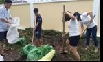 Người dân Côn Đảo đã cảm nhận rõ bão đổ bộ