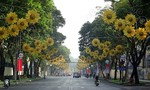 TP.HCM: Cấm xe vào đường Lê Duẩn để tổ chức lễ hội