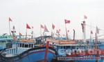 Tưng bừng lễ ra khơi đánh bắt đầu năm mới của ngư dân Lý Sơn