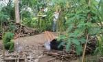 Phát hiện xác chết với nhiều vết đâm trong vườn cây
