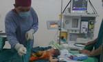 Khối gan to bằng quả cam sành nằm ngoài ổ bụng một bé sơ sinh