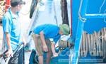 Một ngư dân bị thương nặng do dây tời đứt quật vào người