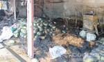 Nhiều ki-ốt trái cây bốc cháy lúc giữa trưa