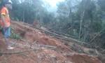 Khai thác đá, chặt cây khiến rừng Xuân Lẹ cạn kiệt
