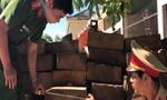 Quảng Ngãi: Bắt ô tô chở gỗ lậu còn chạy tiền thoát tội