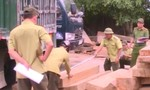 Phát hiện 125m3 gỗ nghi là gỗ lậu tập kết trước cổng công ty