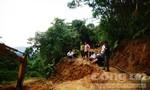 Phá đường giáp ranh huyện Bắc Trà My để ngăn chặn lâm tặc vào phá rừng