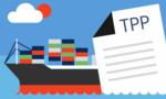 TPP có khả năng được tiếp tục duy trì mà không có Mỹ