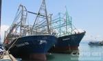 Giải quyết vụ ngư dân đóng tàu võ thép bị hư hỏng hàng loạt