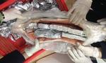 Giấu sản phẩm động vật hoang dã trong bụng cá hồi đem về Việt Nam