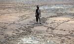 Kinh hoàng cách thức biến đổi khí hậu ảnh hưởng đến con người
