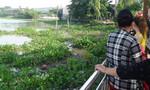 Kinh hãi thi thể cụ bà đang phân hủy trên sông Sài Gòn