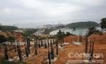 Đà Nẵng rà soát, tính toán thu hồi dự án ở bán đảo Sơn Trà