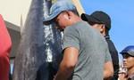 Ngư dân Phú Yên ra Trường Sa bắt được cá ngừ khủng nặng 240kg