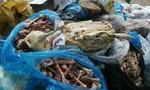 Trung bình mỗi năm có 167 vụ, 27 người chết do ngộ độc thực phẩm