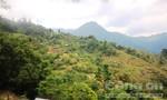 Đề nghị bổ sung 4 dự án thủy điện vừa và nhỏ ở huyện Nam Trà My