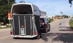 Đại gia dùng Lexus LS570 kéo xe ngựa quý