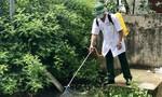 BĐBP hỗ trợ địa phương khoanh vùng ổ dịch, điều trị sốt xuất huyết