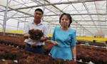 Đi tìm nguồn nông sản sạch cho 10 triệu dân TP.HCM
