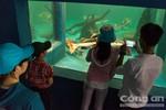 Vườn chim thú thiên nhiên Đầm Sen sẽ là thành viên Hiệp hội SEAZA