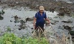 Một người tử vong do dùng xiệc điện bắt cá