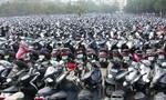 Công an Q.8 tìm chủ sở hữu 22 xe máy và ô tô