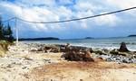 Xây dựng, sửa chữa kè chống sạt lở biển ở xã đảo Tam Hải