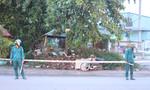Hoảng hồn phát hiện người đàn ông chết bên đường