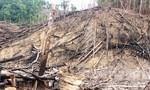 Thủ tướng Nguyễn Xuân Phúc yêu cầu, điều tra làm rõ vụ phá rừng phòng hộ Tiên Lãnh