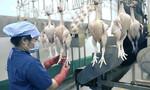 TP.HCM: Mạnh tay xử lý các trường hợp sản xuất, tiêu thụ sản phẩm 'bẩn'