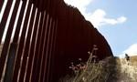 Mỹ bắt đầu xây dựng bức tường phân chia biên giới với Mexico