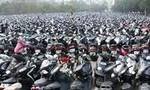 Công an Q.8 tìm chủ sở hữu nhiều xe máy và biển số
