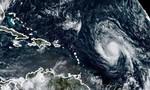 Người dân Mỹ sắp phải đón thêm siêu bão Irma