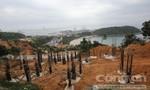 Sự thật 137 lô đất biệt thự trong dự án chưa được giao đất