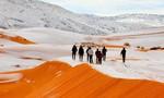 Chuyện hi hữu:  Tuyết rơi ngập hoang mạc Sahara