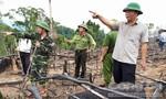 Đề nghị truy tố 2 vợ chồng phá 16 hecta rừng suốt hơn 2 tháng