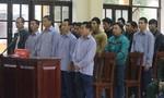 Xét xử 21 bị cáo trong vụ phá rừng pơmu chấn động ở Quảng Nam