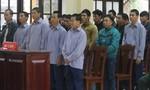 Vụ phá rừng pơmu chấn động ở Quảng Nam: Tòa trả hồ sơ