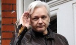 Nhà sáng lập WikiLeaks gặp vấn đề sức khỏe sau 5 năm lẩn trốn