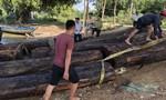"""Phát hiện thuyền chở lượng lớn gỗ lậu """"ngầm"""" trên sông"""