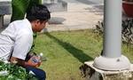 Dạo bến Ninh Kiều ngập nước do triều cường, thiếu nữ bị điện giật