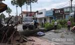 """Mưa gió """"càn quét"""" trung tâm huyện Trảng Bom, thiệt hại lớn về tài sản"""